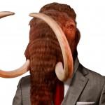Mammut projektledare bred